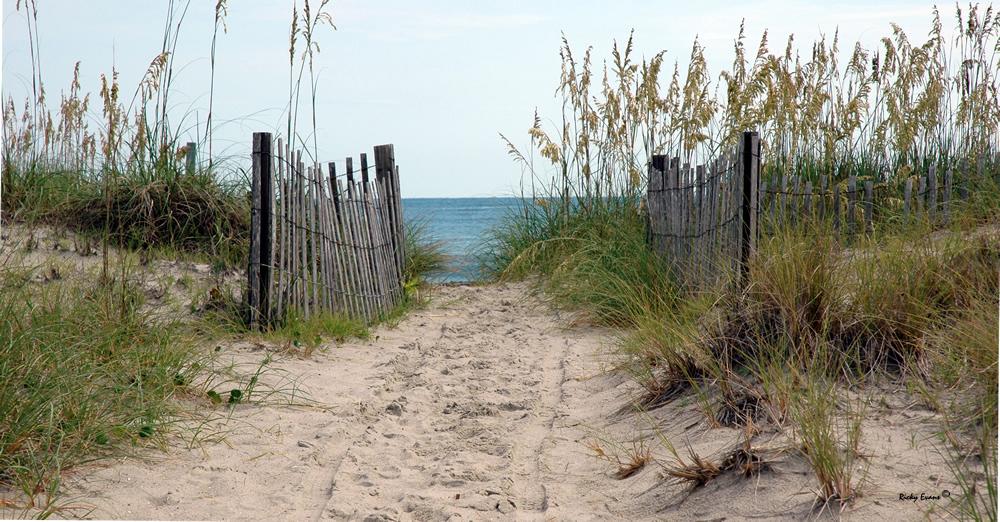 Beach Path by Ricky Evans