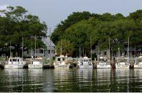 Yacht Basin Boats