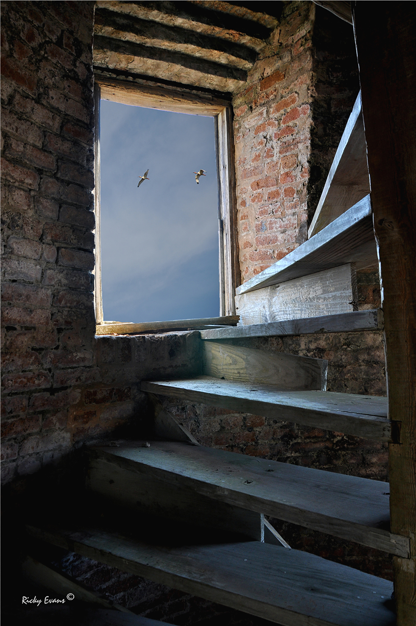 Inside Prices Creek Lighthouse - Photograph by Ricky Evans