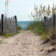 Bald Head Beach Path