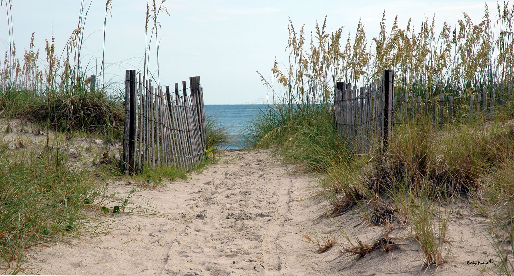 Bald Head Beach Path - Photograph by Ricky Evans