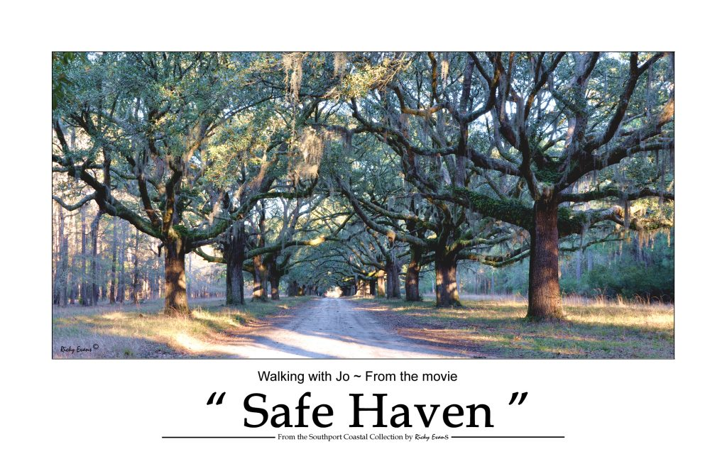 Safe Haven Walk with Jo