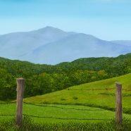 Blue Ridge Meadow